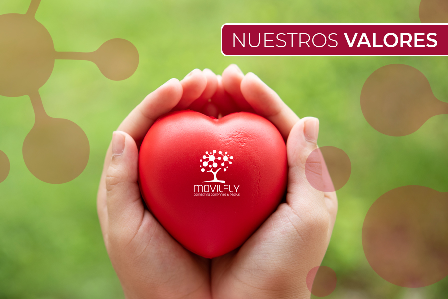 Valores Movilfly